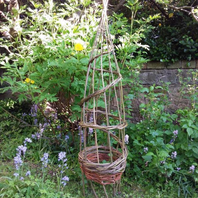 Janet Stevenson, Willow Plant Support, local willow, 180x215cm,  £35